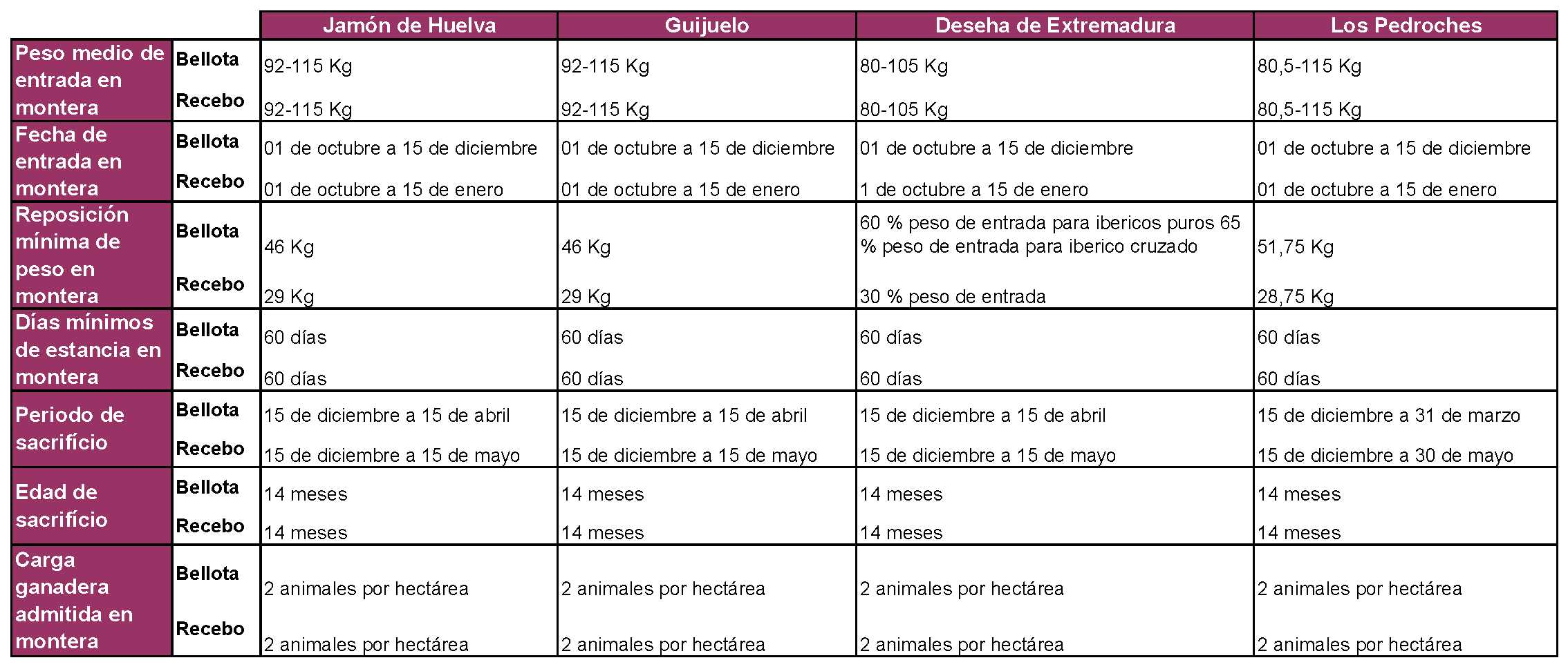 Tabla comparativa bellota y recebo